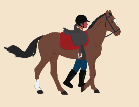 Piecing Together The Performance Horse Puzzle The Horse