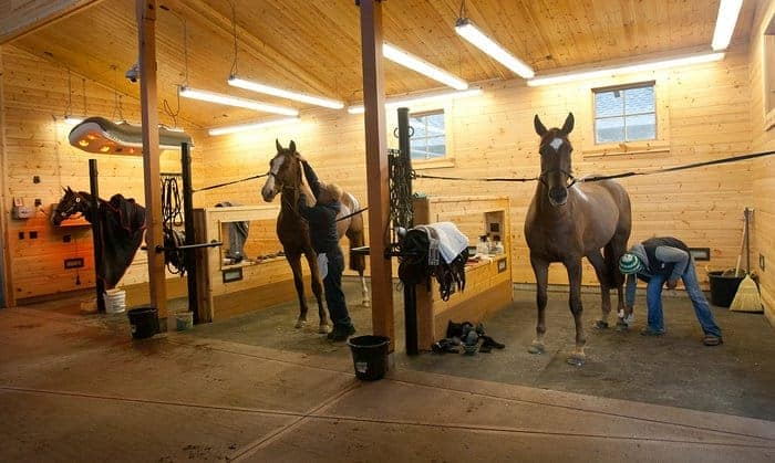 a well designed grooming area - Horse Stall Design Ideas