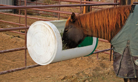 Build a Low-Cost Hay Feeder