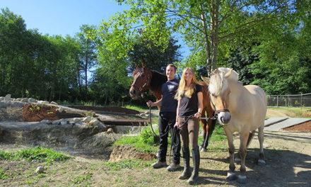 Washington Horse Farm Uses Rain Gardens for Mud Control in Paddocks and Mountain Trail Course