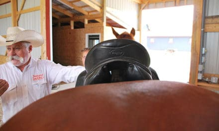 Six Take-Homes from My Saddle Fitting Session