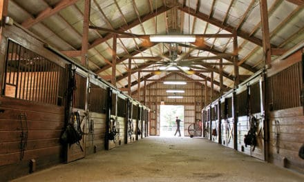 Equine Innovators: Optimizing Barn and Arena Ventilation