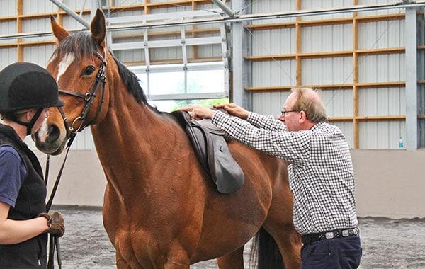 Saddle assessment