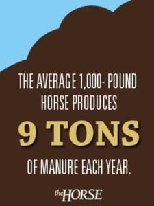 The average 1,000-pound horse produces 9 tons of manure each year.