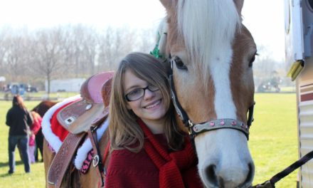 12 Christmas Wishes for Horses, Owners from Veterinary Experts