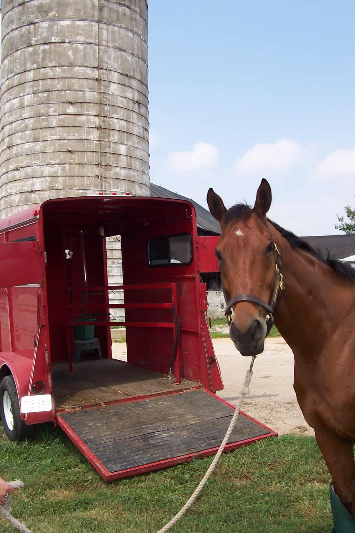 How Do I Get My Horse to Load into a Trailer?