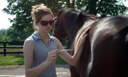 Second Maryland Horse Develops EHM Signs
