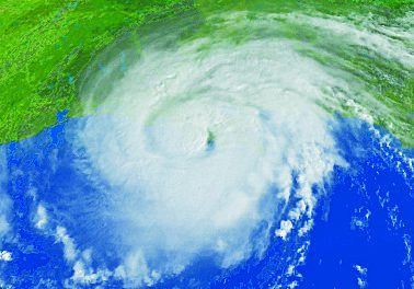 Hurricane Season Resources for Horse Owners