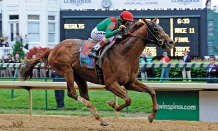 Kentucky Derby Winner Animal Kingdom Cleared for Exercise