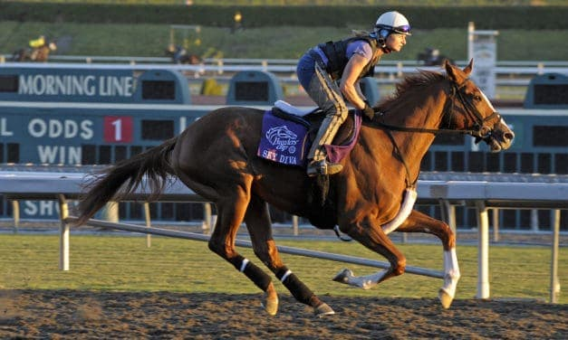 Retraining Racehorses