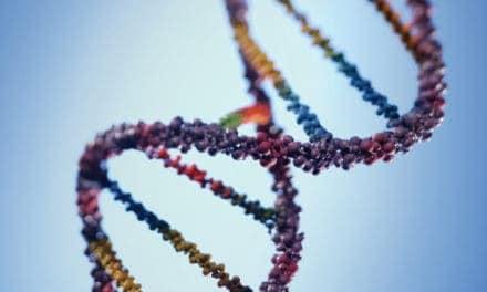 Quarter Horse Genome Sequenced