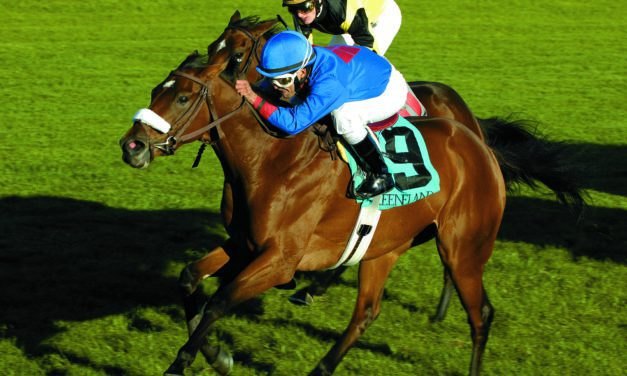 Do Whips Encourage Racehorses to Run Faster?