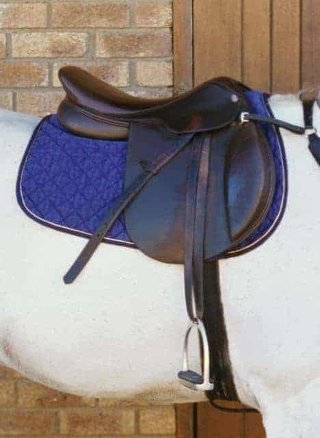 Treeless vs  Conventional Saddles: Back Pressure Evaluated – The Horse