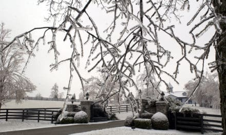 Preparing Horse Farms for Winter Weather Disasters