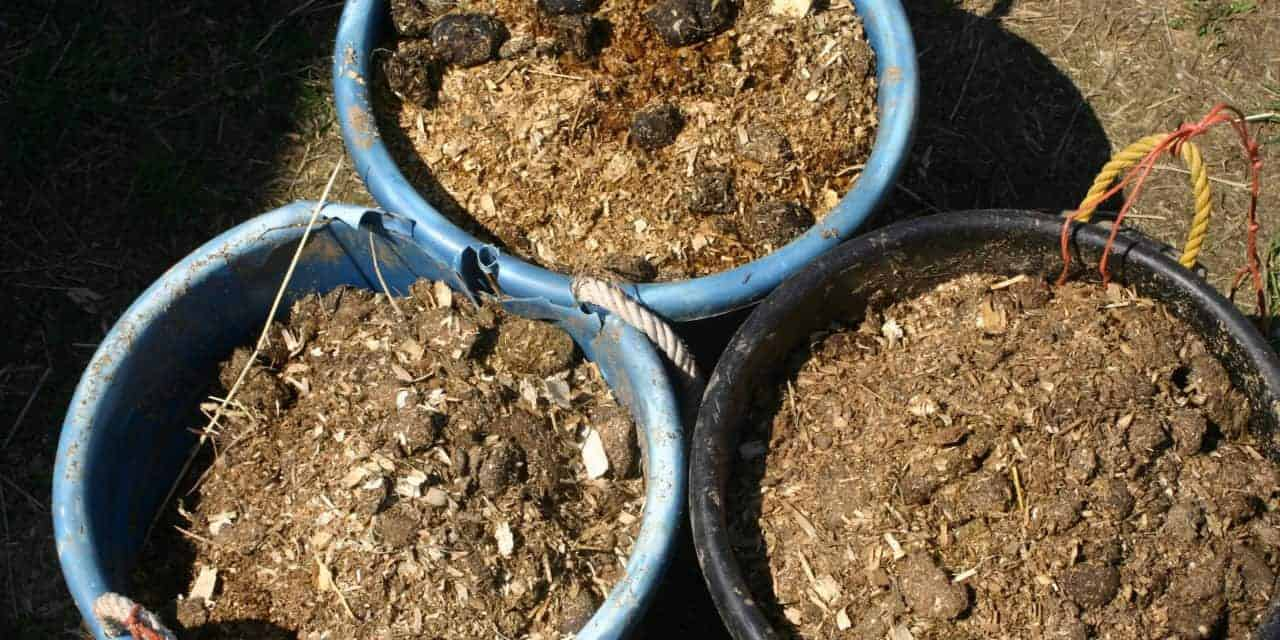 Use Caution when Fertilizing with Raw Horse Manure – The Horse