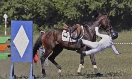 Horse Farm Liability
