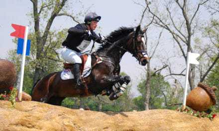 Researchers Review Three-Day Eventing Horse Fitness Parameters