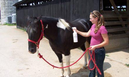 Montana Confirms Equine WNV Cases
