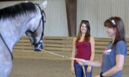 ASPCA Grants $290,000 to Assist Retired Racehorses