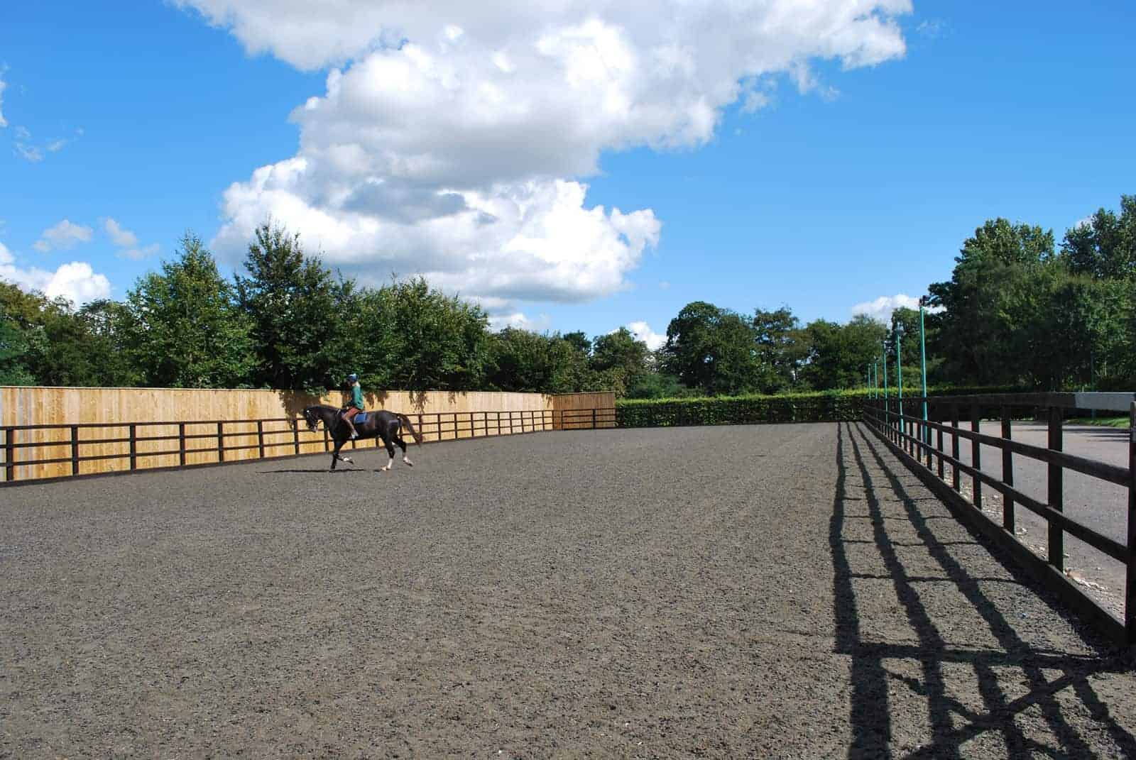 Improving Horse Arena Surfaces – The Horse