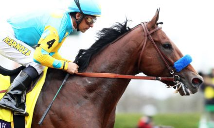 Does a Racehorse Know if He Wins or Loses?