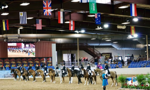 Mixed Economic Outlook for Equine Industry in 2017