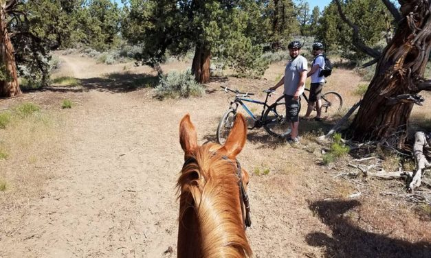 Mountain Bikes on Horse Trails? No Problem if You're Prepared
