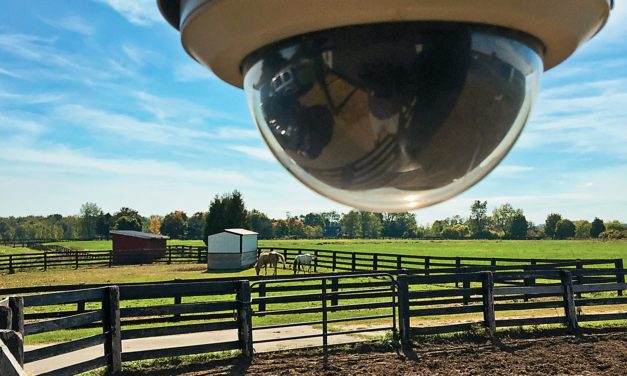 Protecting Your Horse Property From Theft