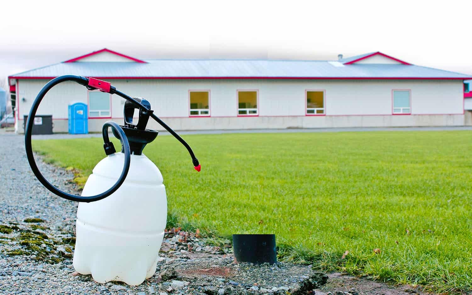 how to disinfect your farm the horse