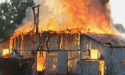 Don't Let Your Horse Hay Go Up in Flames