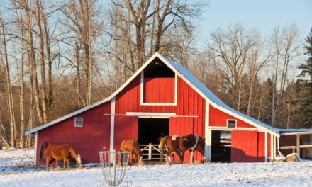 Heated Barns and Horses: Special Considerations Needed