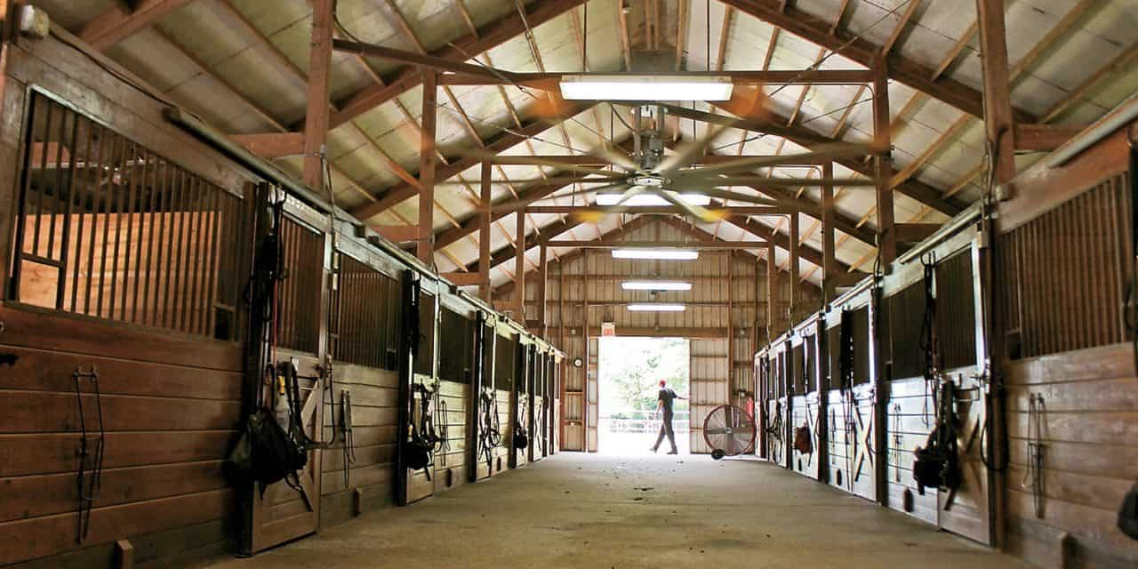 Poll Recap Beating The Heat In Horse Barns The Horse