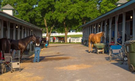 Biosecurity at Equine Events