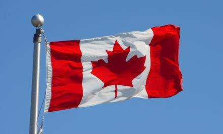New Equine Canada Horse Welfare Rule Effective Immediately