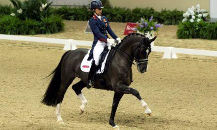 Is Your Equine Athlete Happy?