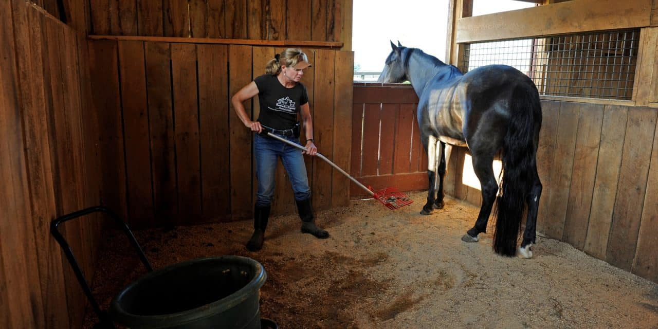 Ammonia: Out of My Barn!