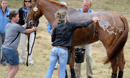 Managing Dehydration, Exhaustion in Horses (AAEP 2012)