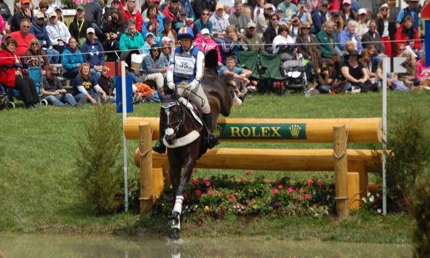 What Supplements Do Eventing and Dressage Horses Consume?