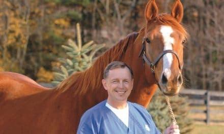 Palmer Named NYSGC Equine Medical Director