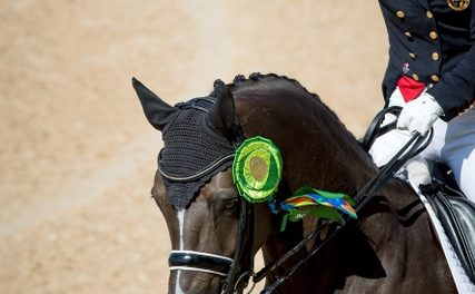 Dujardin and Valegro Break Olympic Record in Freestyle