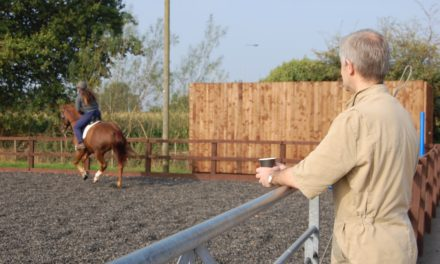 Working Up Poor Performance in English Sport Horses