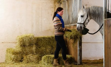 Help! My Horse Is Losing Weight on a Ration Balancer