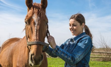 Keeping the Aging Horse Comfortable