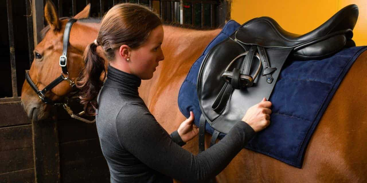 Six Veterinarian-Approved Saddle-Fit Tips