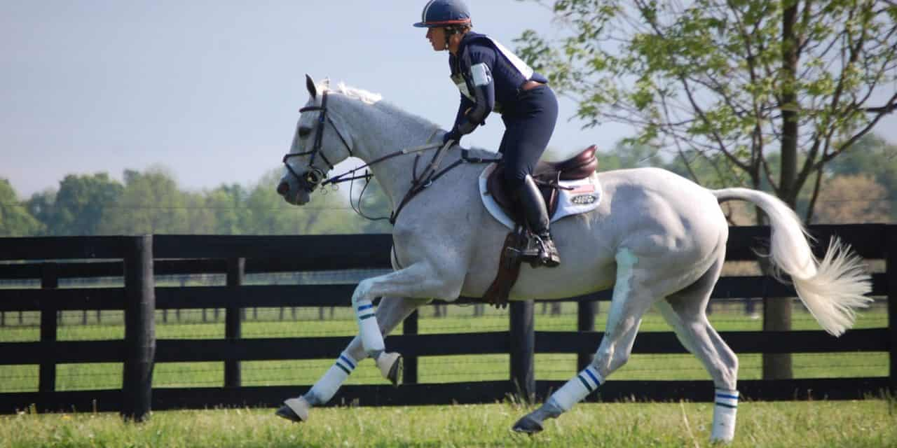 Creating a Sustainable Equine Athlete