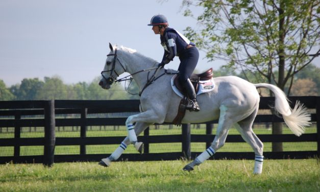 3 Indicators of an Upper-Level Event Horse's Potential for Success