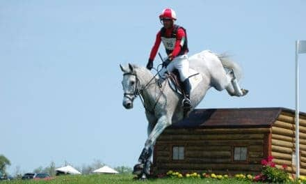 How Horses' Ear Direction Affects Jumping Success
