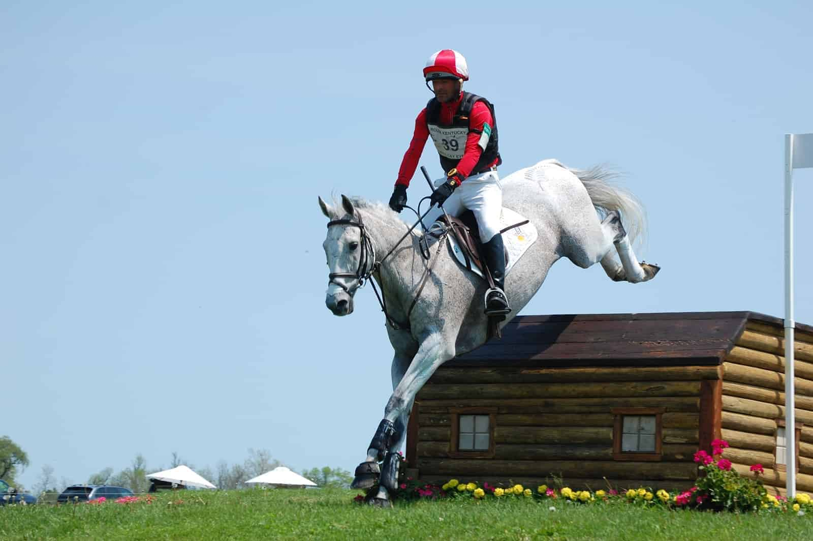 How Horses Ear Direction Affects Jumping Success The Horse