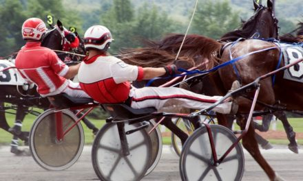 Ohio Adopts 'Use of the Whip' Rule for Standardbreds