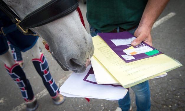 How Will Brexit Impact British, European Horses?